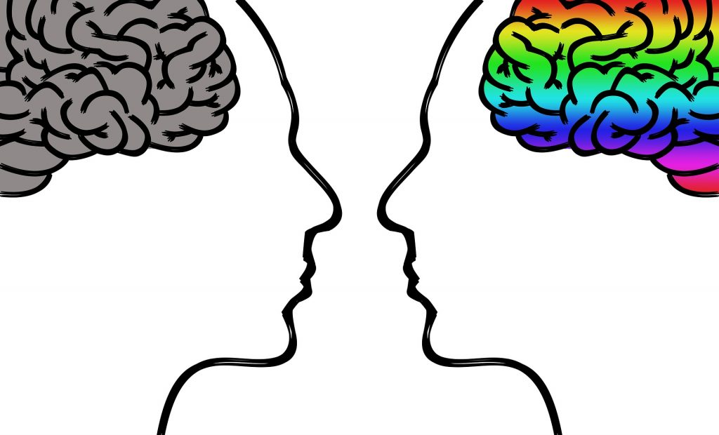 sapiosexuals are highly attracted to intelligence